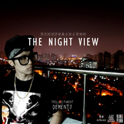 The Night View