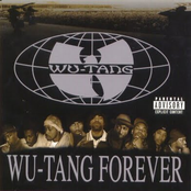 Wu-Tang Forever (2 Of 2)