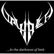 in the darkness of limb