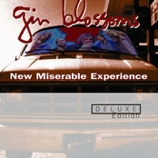 New Miserable Experience (Deluxe Edition)