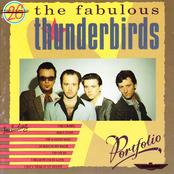 The Fabulous Thunderbirds: Portfolio