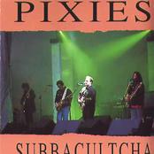 Subbacultcha