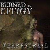 Burned In Effigy: Terrestrial EP