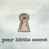 Melissa Etheridge: Your Little Secret
