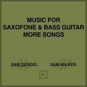 Sam Gendel & Sam Wilkes - Music for Saxofone & Bass Guitar More Songs Artwork