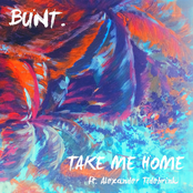 Take Me Home (feat. Alexander Tidebrink) - Single