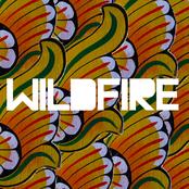 Wildfire (feat. Little Dragon) - Single