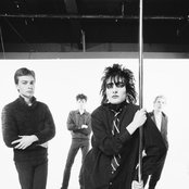 Siouxsie and the Banshees 6aecf079124ecee2a895429c36e8ec37