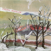 Cheryl Wheeler: Different Stripe