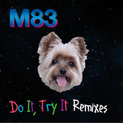 Do It, Try It (Remixes)
