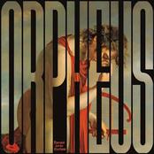 Orpheus vs The Sirens