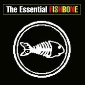 Fishbone: The Essential Fishbone