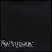 Aaron Kamm and The One Drops: Feed the Meter