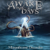 Awake For Days: Magnificent Disorder