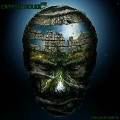 Cryptic House 8