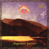 Nightshade Forests (EP)