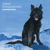 Advance Base: Animal Companionship