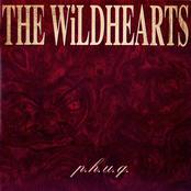 P.H.U.Q. (Extended Version)