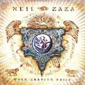 Neil Zaza: When Gravity Fails