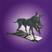 Pot Noddle by The Black Dog