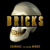 Carnage: Bricks