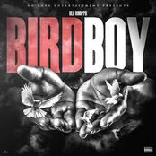 Birdboy - Single
