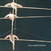 The Messthetics: The Messthetics