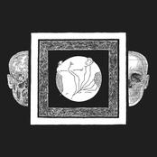 Ash Borer / Fell Voices Split