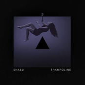 Trampoline (Stripped)