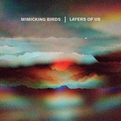 Mimicking Birds: Layers of Us