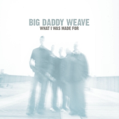 Big Daddy Weave: What I Was Made For