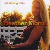 The Bearing Trees