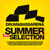 Rewind: Drum&BassArena: Summer Selection 2012
