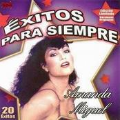 Amanda Miguel: 20 Exitos