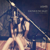 Cactus In the Valley (feat Owl City) [Acoustic]