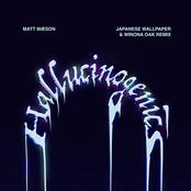 Hallucinogenics (Japanese Wallpaper & Winona Oak Remix)
