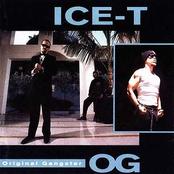 O.G. - Original Gangster