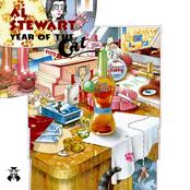 Al Stewart: Year Of The Cat