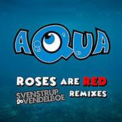 Roses Are Red (Svenstrup & Vendelboe Remixes)
