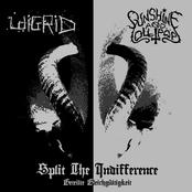 Split the Indifference (Geteilte Gleichgültigkeit) (Split)