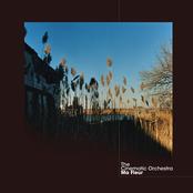 Cinematic Orchestra: Ma Fleur