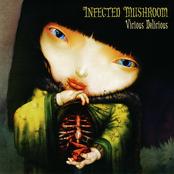 Infected Mushroom: Vicious Delicious