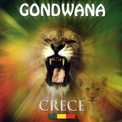 Gondwana: Crece