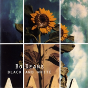 The BoDeans: Black And White