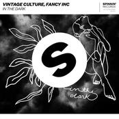 Vintage Culture: In The Dark