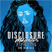 Disclosure - Magnets (The Remixes)
