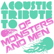 Acoustic Tribute to Of Monsters and Men