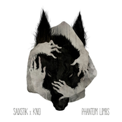Phantom Limbs [Deluxe Edition]