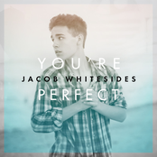 You're Perfect - Single