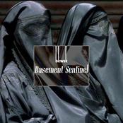 Basement Sentinel
